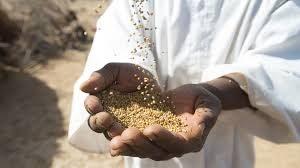 Zakat: Sens et protée spirituelle